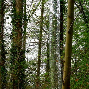 Sculture en l'île - Les facéties d'un tronc - Les deux Marions