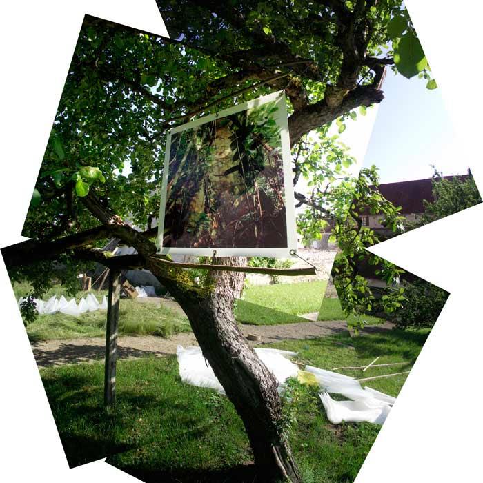 «Filigrane» à la Maison Laurentine