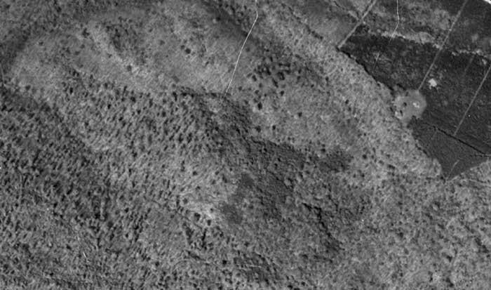 IGN_1948